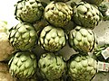Artichoke heads stuck in ice.jpg