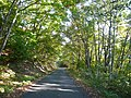 Asamata, Mishima, Onuma District, Fukushima Prefecture 969-7518, Japan - panoramio.jpg