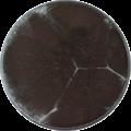 Aspergillus aculeatinus cya.png