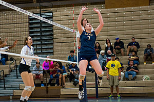 Texas A&M–Commerce Lions women's volleyball - The 2014 team in action against the Southern Arkansas Muleriders