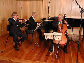 Eye movement in music reading - A piano trio comprising a pianist, violinist and cellist. Chamber groups traditionally perform publicly from score rather than from memory.