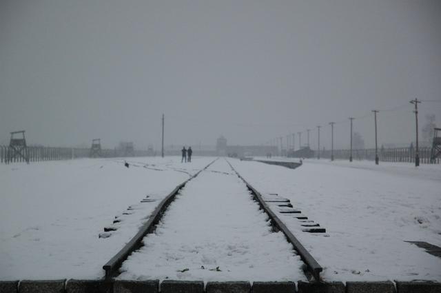 640px-Auschwitz_gleise.png (640×425)