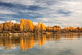 Autumn in Bystroistokskiy district Altai krai 10.JPG
