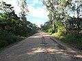 Avenida Vista Alegre - Palma - Santa Maria, foto 59 (sentido N-S).jpg - panoramio (1).jpg