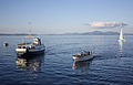 Båter på Trondheimsfjorden (4754424508).jpg