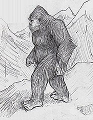 https://upload.wikimedia.org/wikipedia/commons/thumb/d/da/B5bugerbear.jpg/186px-B5bugerbear.jpg