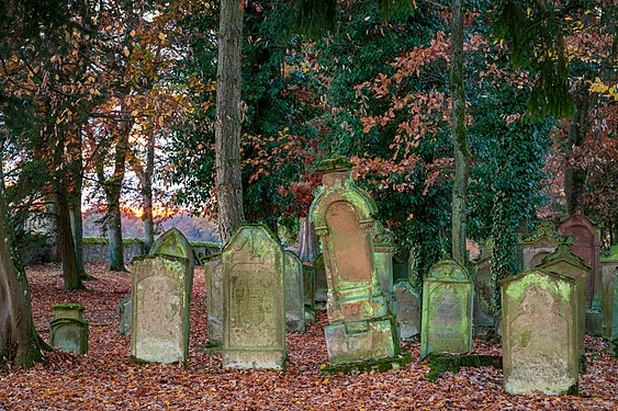 Bad Rappenau - Heinsheim - jüdischer Friedhof - Blick über Ostmauer bei Sonnenuntergang.jpg