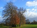 Badgemore Park Golf Club - geograph.org.uk - 1067241.jpg