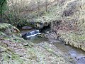Badger Beck - geograph.org.uk - 430181.jpg