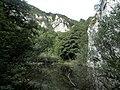 Banat,Nera Canyon - panoramio (29).jpg