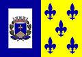 Bandeira de Descalvado-SP.jpg