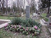 Baranyay József - Komáromi temető.JPG