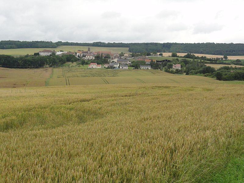 Bathelémont (M-et-M) paysage