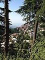 Beauty of Himachal Pradesh.jpg