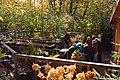 Bellevue Botanical Garden 07.jpg