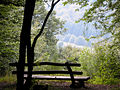 Bench-with-vista.jpg
