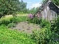 Beryozovka, Bryanskaya oblast', Russia, 242524 - panoramio (6).jpg
