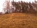 Bialaručy, Belarus - panoramio (1).jpg
