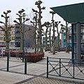 Bibliotheek Heksenwiel DSCF9650.jpg