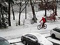 Bicyklista sneh Prešov 17 Slovakia.jpg