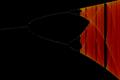 Bifurication diagram 01.png