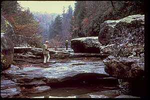 Big South Fork National River and Recreation Area BISO7039.jpg