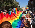 Big rainbow flag being carried (9547880250).jpg
