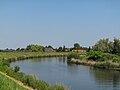 Bij Oosterwijk, de Linge foto5 2010-06-27 11.50.JPG