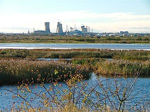 Billingham Manufacturing Plant - Plant seen from Saltholme Marshes near Haverton Hill