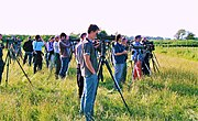 Birders watching Britain's fifth-ever White-tailed Lapwing at Caerlaverock, Scotland, 6 June 2007.