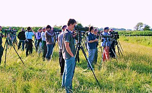 "Twitchers' vocabulary - Twitchers watching a ""mega""—Britain's fifth-ever white-tailed lapwing—and probably adding a ""lifer"" to their ""list""; see text for explanation of italicised terms"