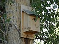 Birdhouse along Spanish Fork River Trail, Jul 15.jpg