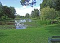 Birr Castle grounds - geograph.org.uk - 1364734.jpg