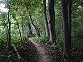 Bluhm County Park - panoramio (1).jpg
