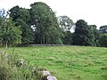 Boatcroft field - geograph.org.uk - 925610.jpg