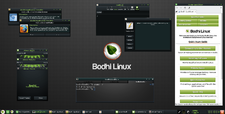 Bodhi Linux 2.1.0