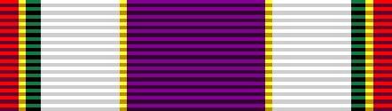 Border Patrol Purple Cross Wound Medal ribbon