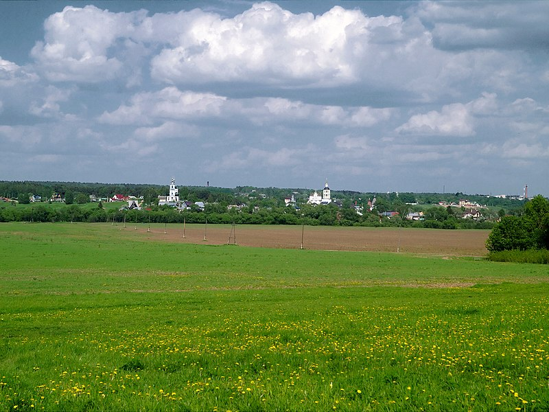 File:Borovsk country 03.jpg