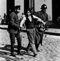 Borracho almendral 1917.png