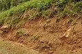Boulder clay - geograph.org.uk - 1326072.jpg