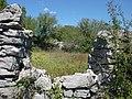 Bracevicii 0908 2010 - panoramio.jpg