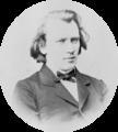 Brahms Johannes by Josef Löwy.png