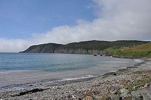 Branch, Newfoundland and Labrador - Branch Cove Fossiliferous Rocks