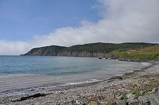 Branch, Newfoundland and Labrador Town in Newfoundland and Labrador, Canada