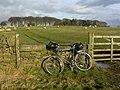Brandon Lane - geograph.org.uk - 124421.jpg