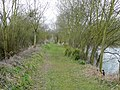 Broadmeadow dog-walking path - geograph.org.uk - 1220319.jpg