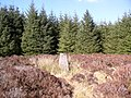 Brockloch Fell Trig Point - geograph.org.uk - 764429.jpg