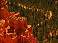 Bryce Canyon National Park 4889434761.jpg