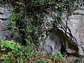 Buchenhöhle DSC04074.jpg