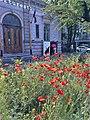 Bucuresti, Romania. Libraria CARTURESTI inchisa, dar Macilor putin le pasa. 10 Mai 2020.jpg